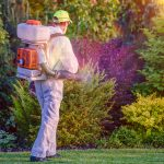 8 Amazing Online Local Pest Control Marketing Strategies