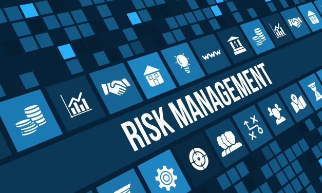 4 Reasons to Consider Risk Management Consulting Services for Your Business